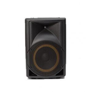 רמקול מוגבר PROTECH-S10- SOUNDSHINE שירותי הגברה-300x300